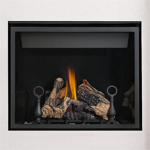 Napoleon Hd40nt Head Vent Clean Facce Fireplace With Negro Door