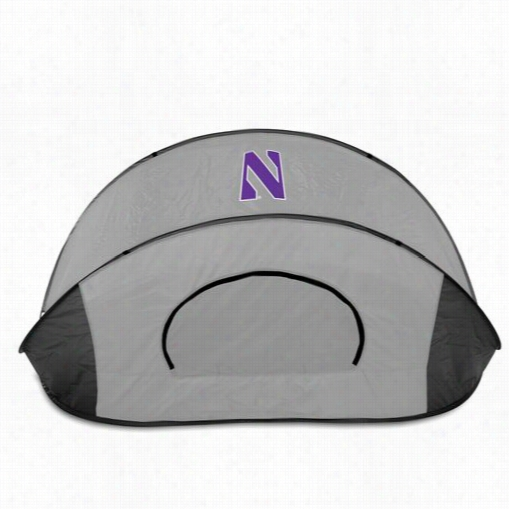 Picnic Tume 113-0 0-105-434-0 Manta In Grey With Northwestern University Wildcats Digital P Rint