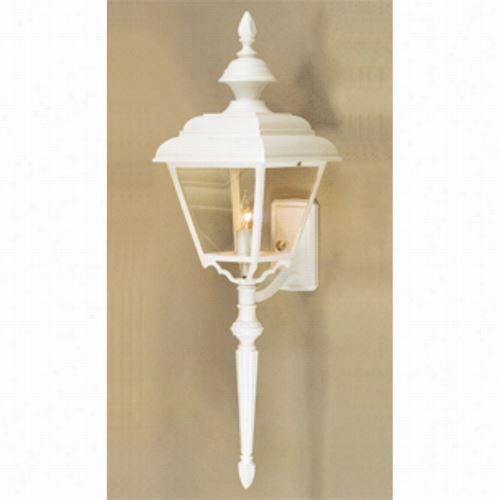 Hanver Lantern B9974 Abundant Four Sided Value Line 100w 1 Light Outdoor Wall Light