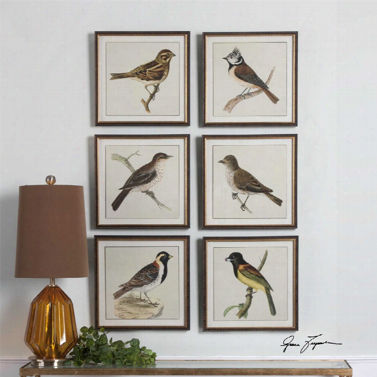 Uttermost Spring Soldiers Bird Prints Set Of 6