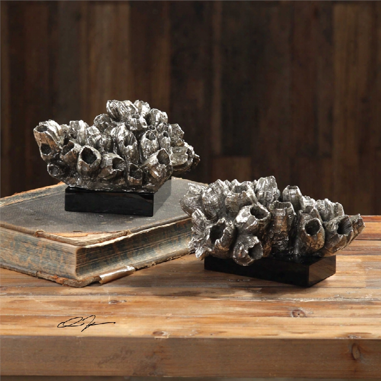 Uttermost Sessile Barnacle Sculptures Set Of 2