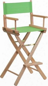 Tyd01-gn-emb-gg Embroidered Bar Height Directors Chair In