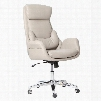 RTA-1007-BG Best Ergonomic Home Office Chair with Lumbar