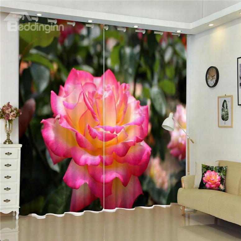 3d Bright Colored Pink Rose Printed Modern And Pastoral Style Living Room Curtain
