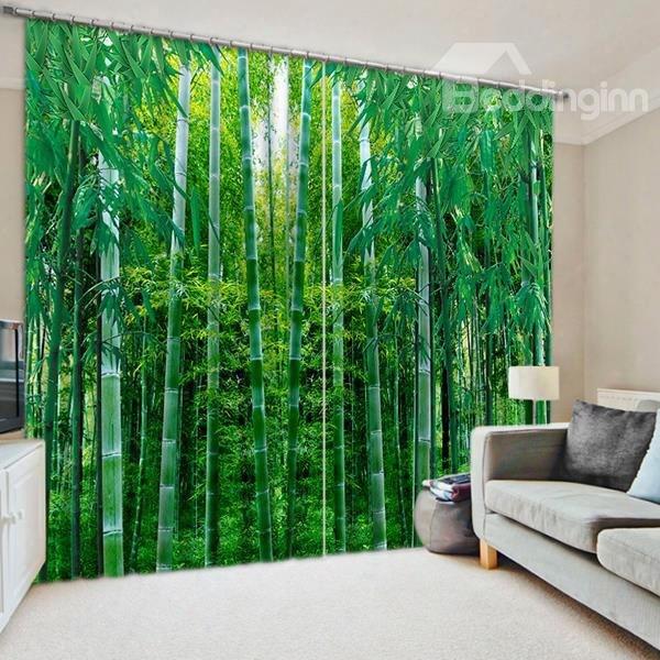 3d Flourishing Greenbamboos Printed Natural Scenery Blackout Custom Curtain For Living Room