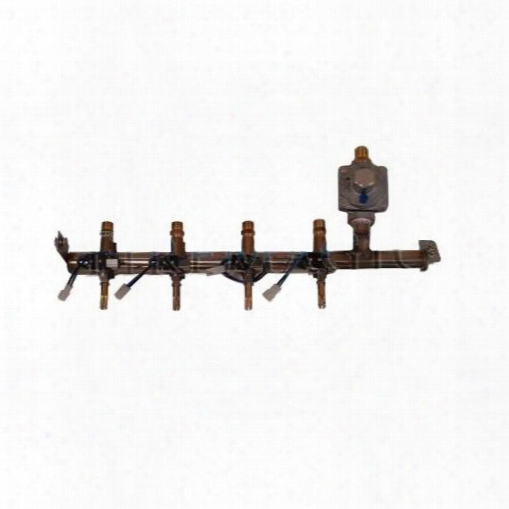 313214p Regulated Manifold Assembly For Custom 1 Grills Liquid